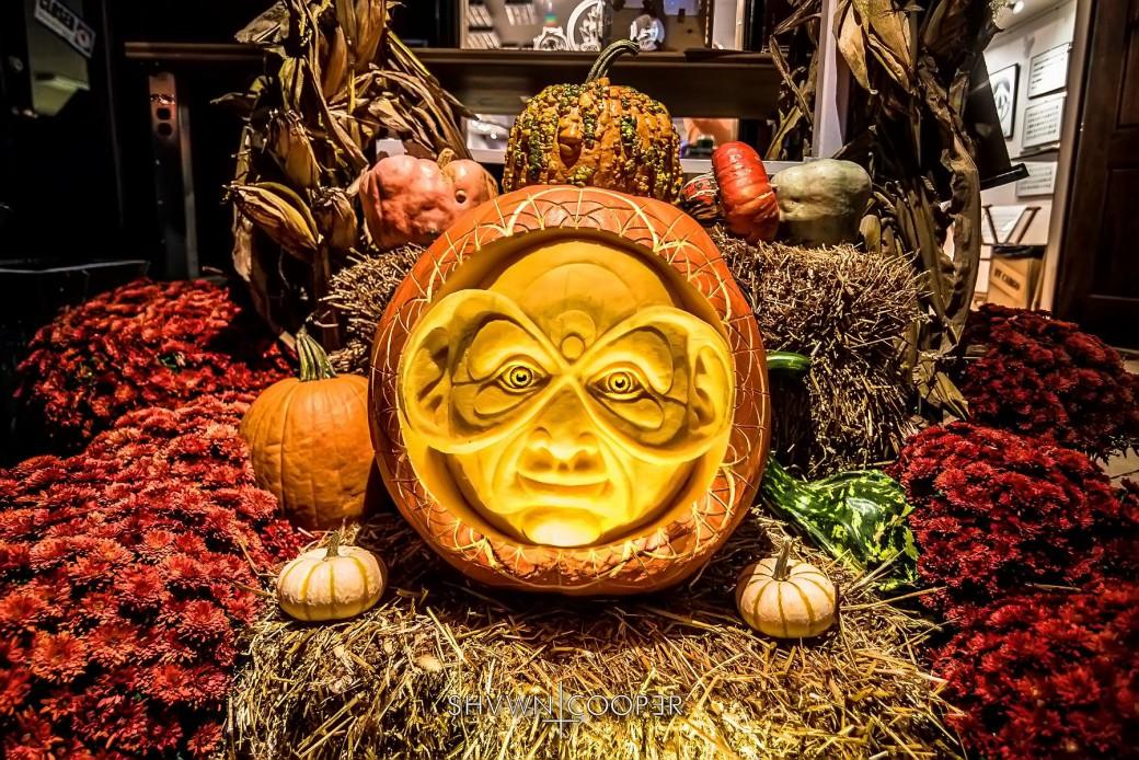 SHVWN COOPER Brain Vessel Auracle pumpkin